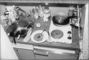 kitchen, police photo