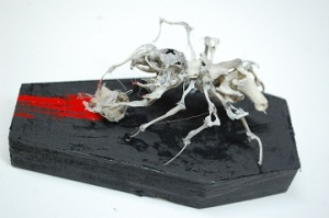 rat skeleton spider taxidermy mount articulation