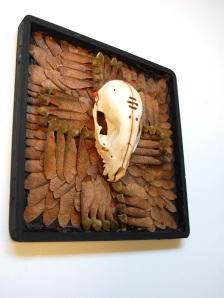 skunk skull mount