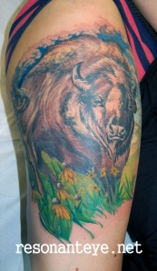 buffalo tattoo