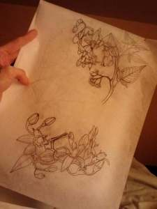 sketches for the nightshade tattoo.