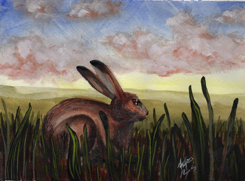 watercolor painting of brown hare